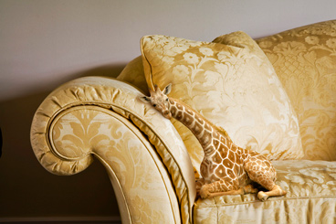Mini Giraffe Marksman Rate Tables